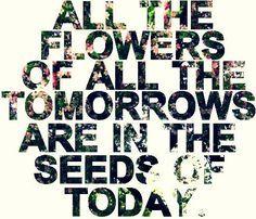 tomorrowsflowers